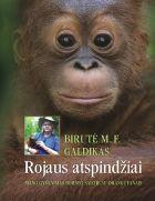 Rojaus atspindžiai. Mano gyvenimas Borneo saloje su orangutanais